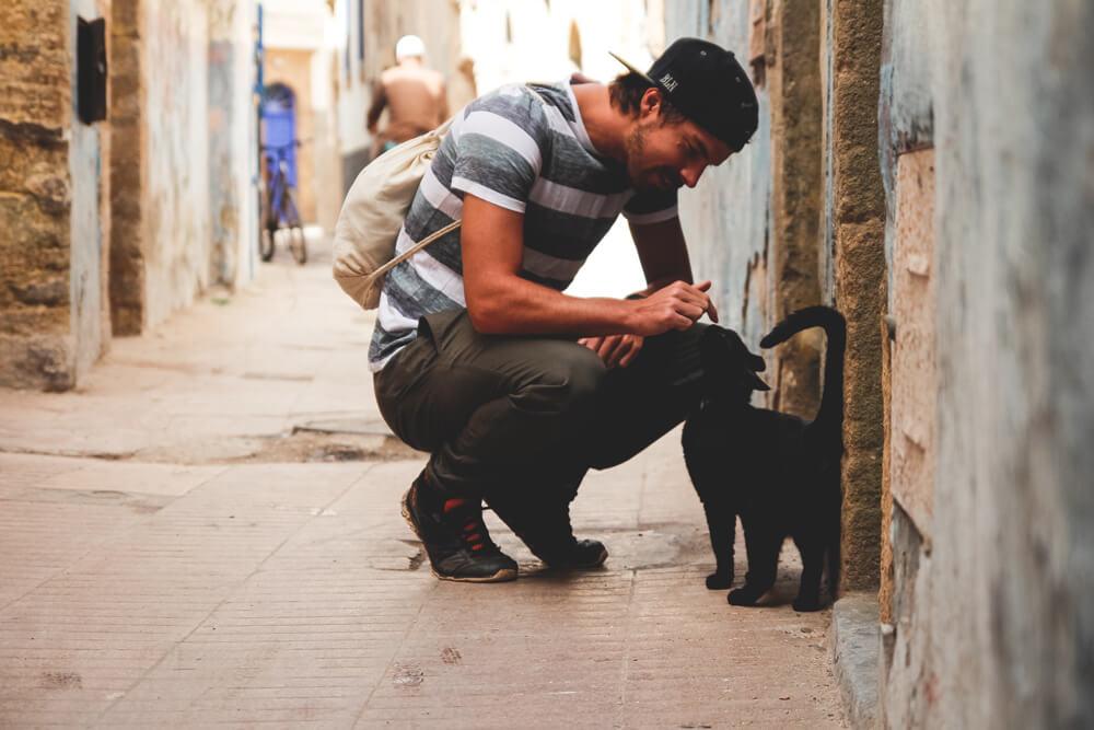 Essaouira-Altstadt-Medina-Marokko-Katze-Marco