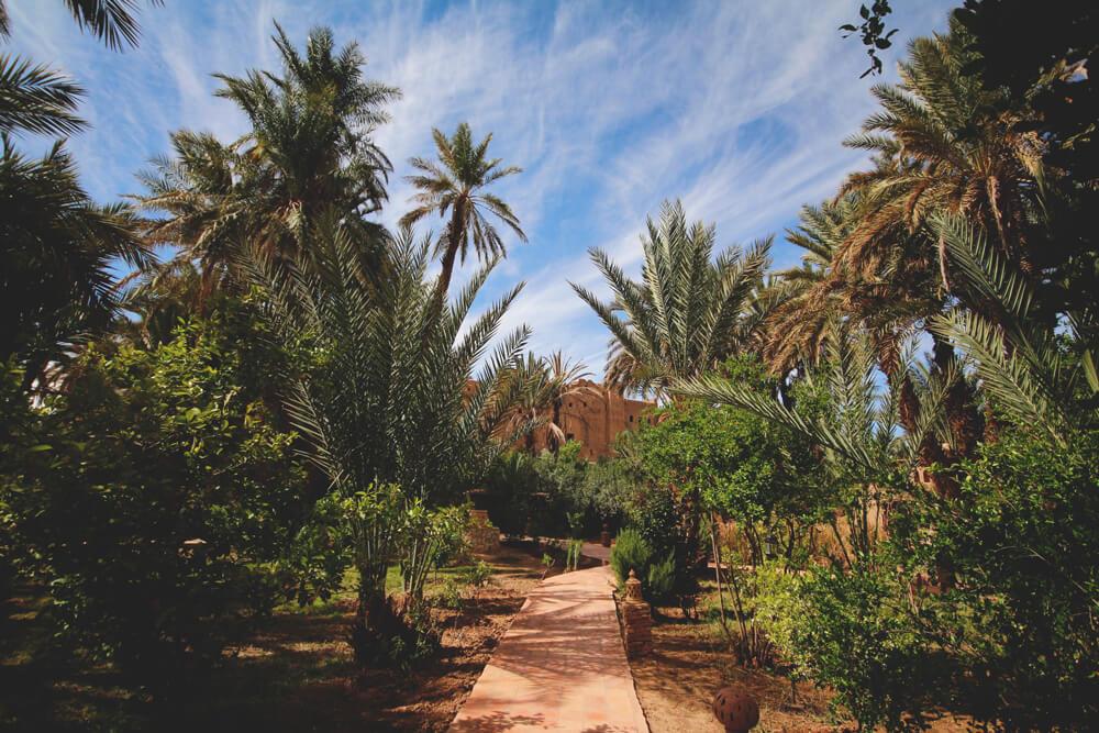 Kasbah-Azul-Agdz-Marokko-Rundreise-Eingangsbereich-Garten