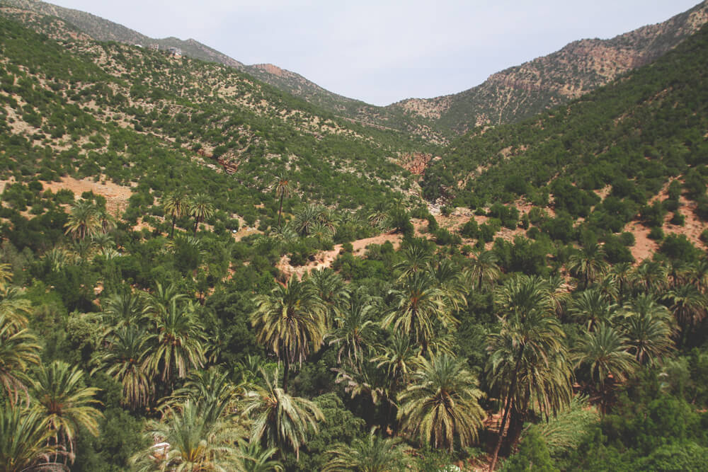 Paradise-Valley-Marokko-Agadir-Taghazout-Oase-Tal