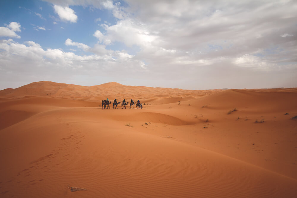Tour-Kamele-Merzouga-Marokko-Sahara-Wueste