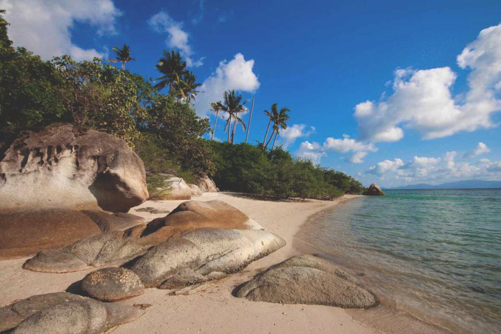 koh-phangan-strand-thailand-palmen