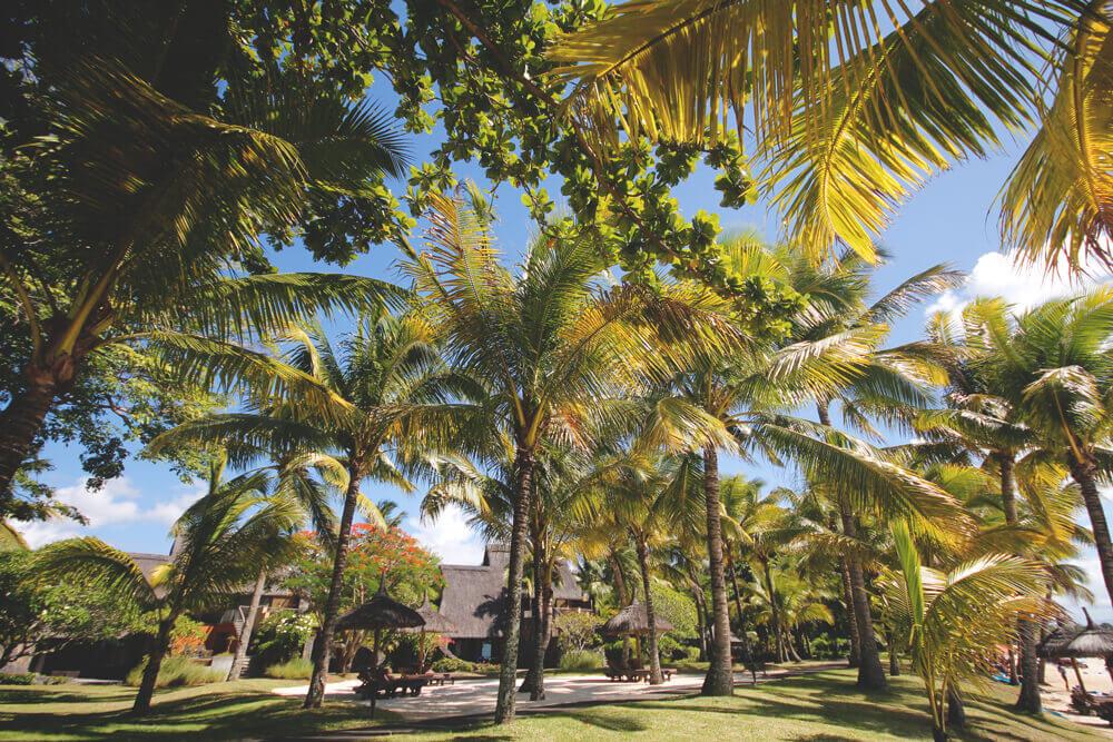 mauritius-hotels-guenstig-buchen