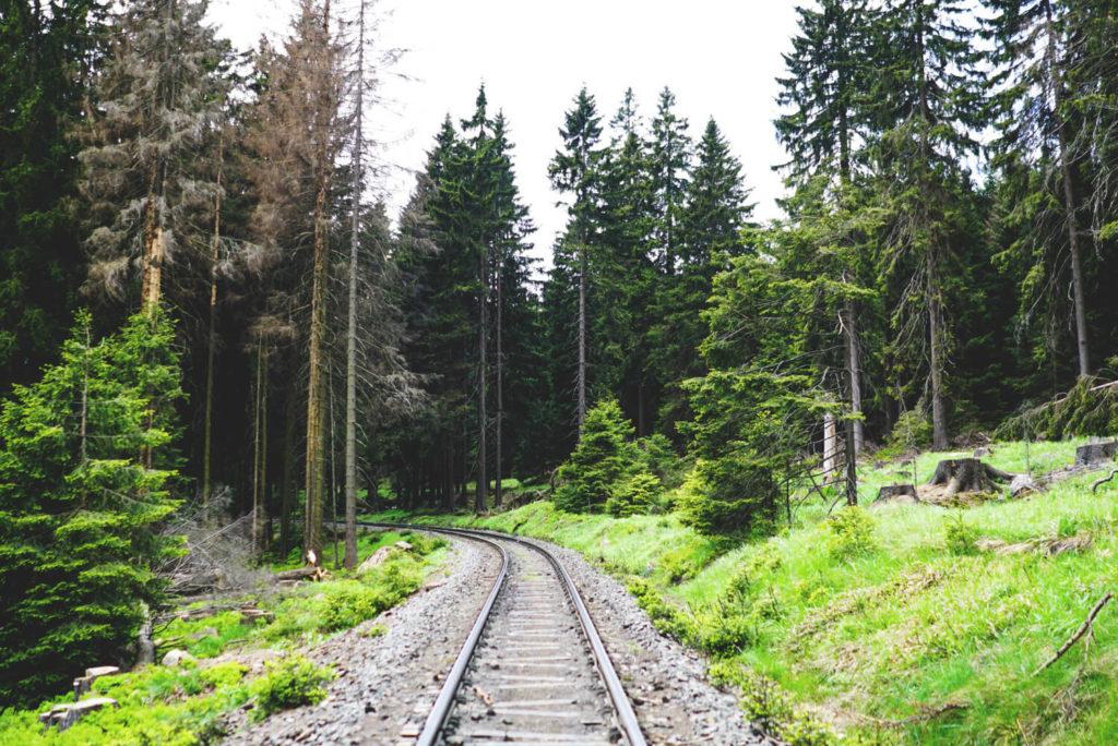 Brockenwanderung-Harz-Brockenbahn-Schmalspur
