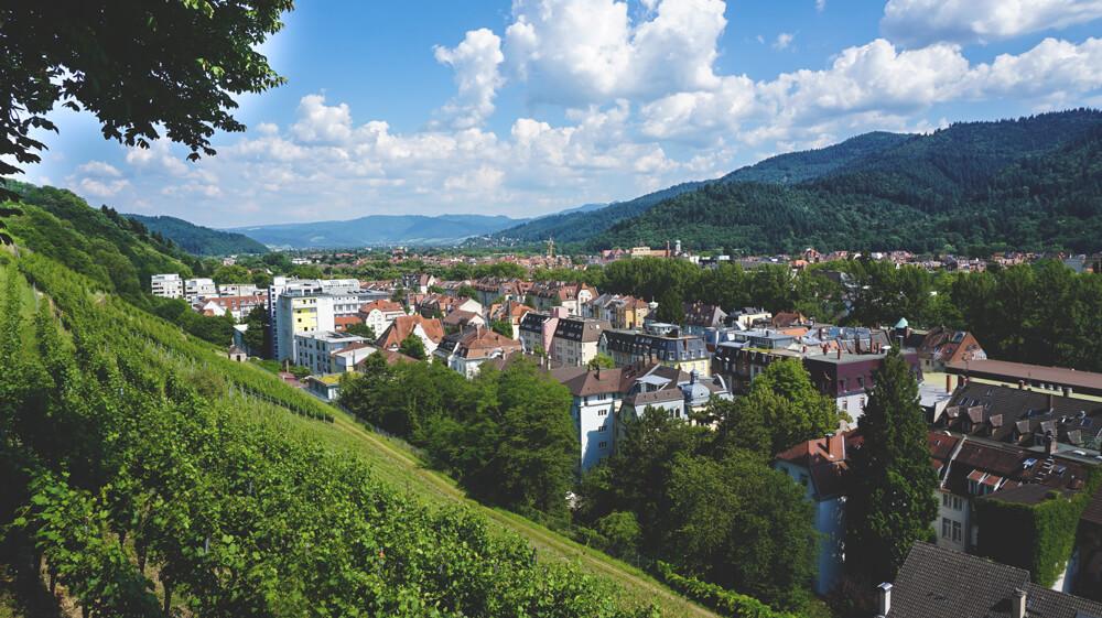 Freiburg-Aussicht-Weinberge-Schlossberg-Tour