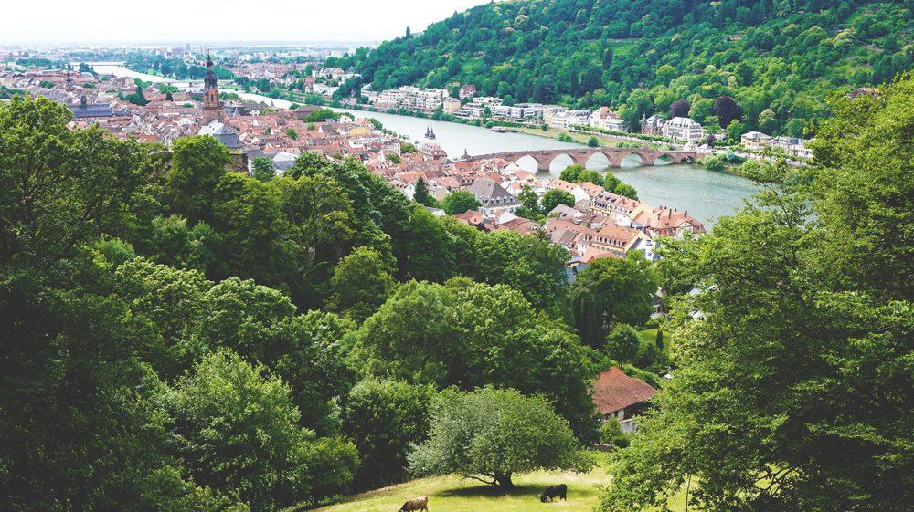 Heidelberg-Tipps-Aussicht-Schloss-Alte-Bruecke