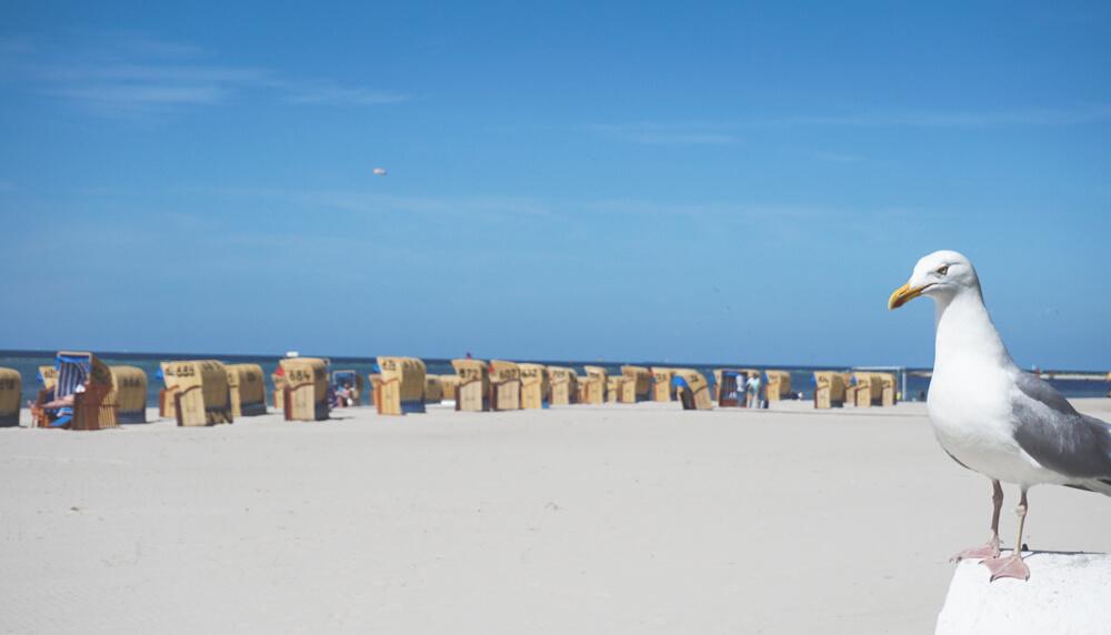 Laboe-Kiel-Strandbad-Strand-Strandkorb-Moewe