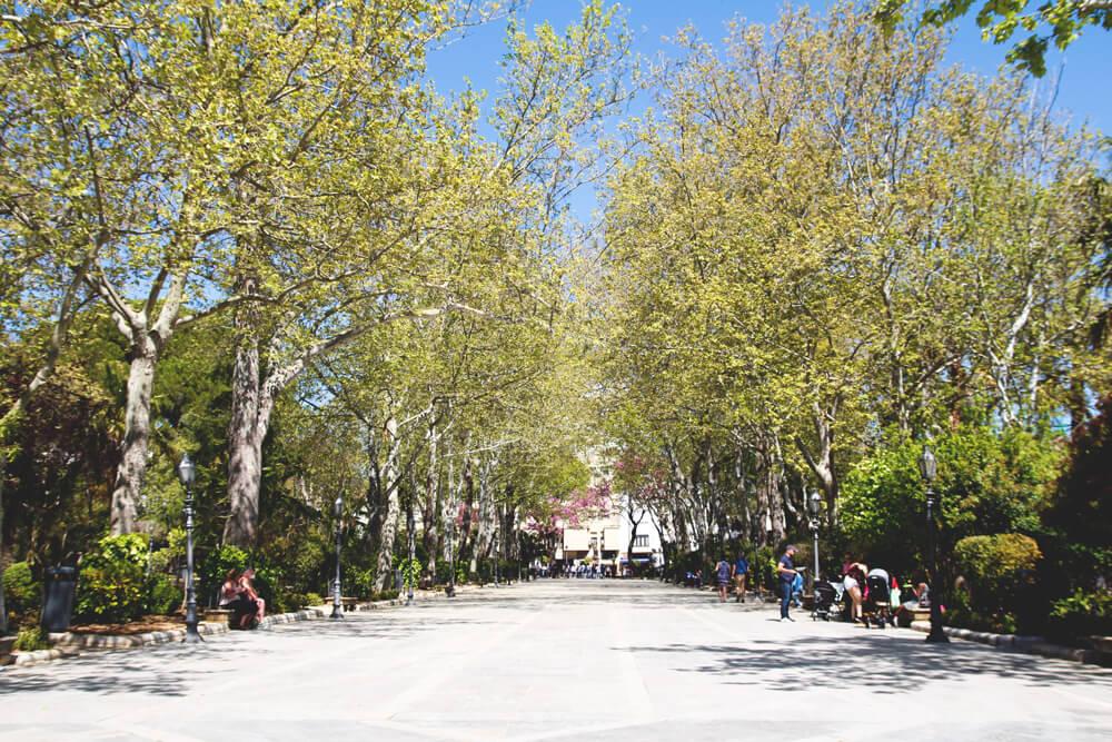 Stadtpark-Ronda-Alameda-Andalusien-Spanien