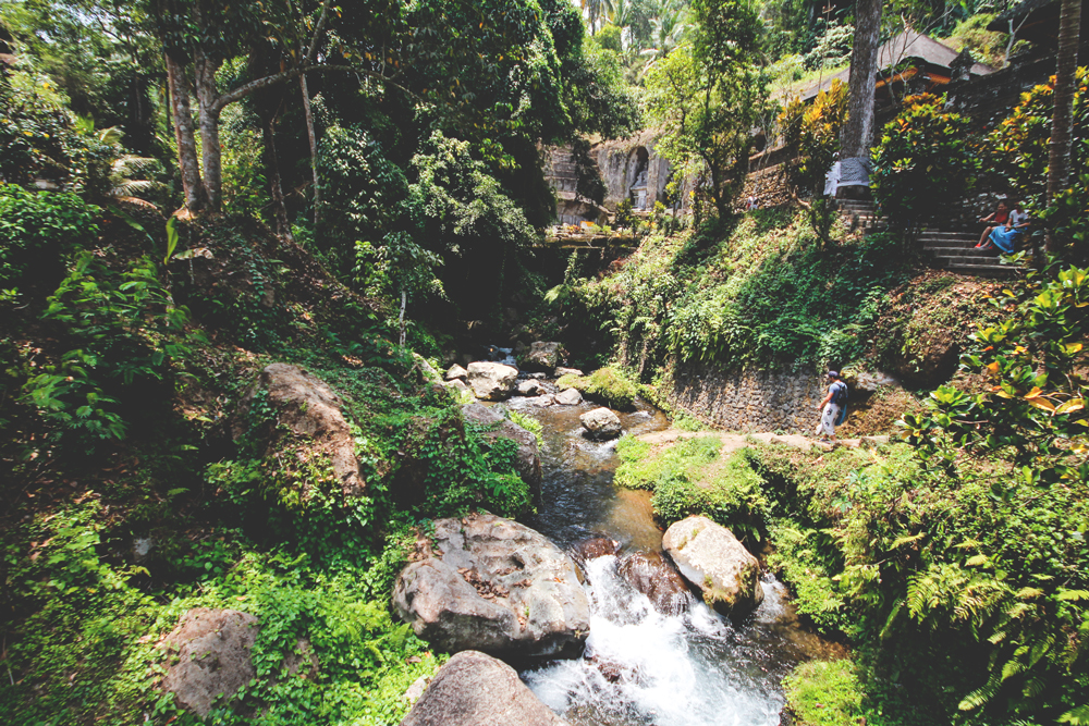 Ubud-Umgebung-Tempel-Natur