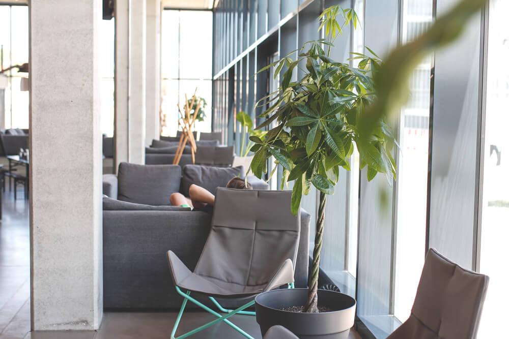 dock-inn-warnemuende-container-hostel-lobby