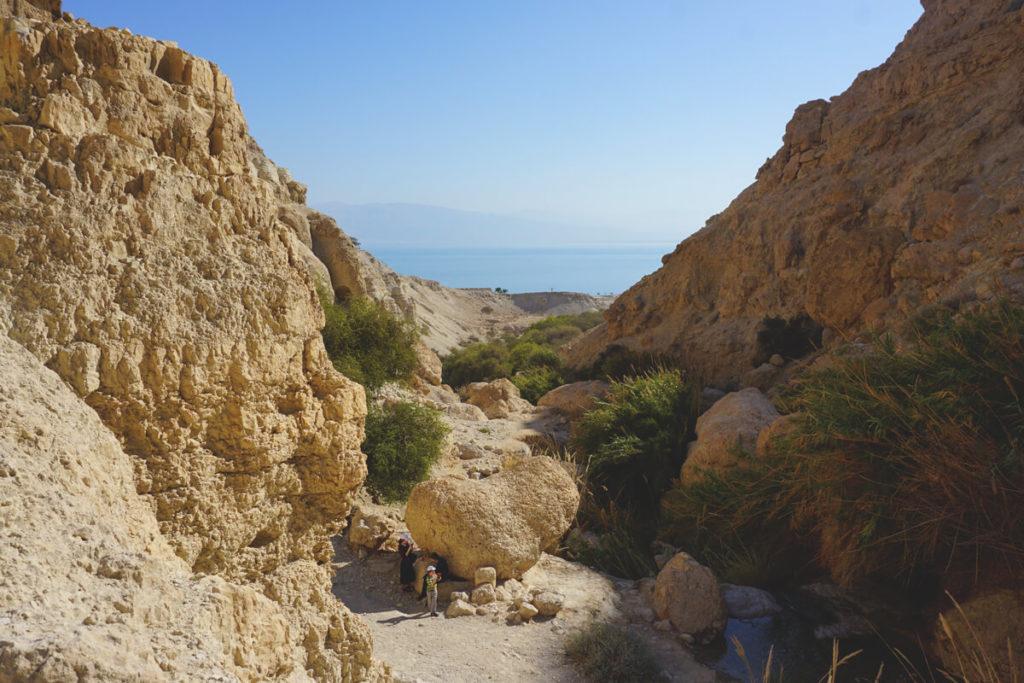 en-gedi-nationalpark-totes-meer-israel