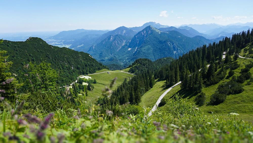 herzogstand-wandern-alpen-walchensee-walchen-heimgarten