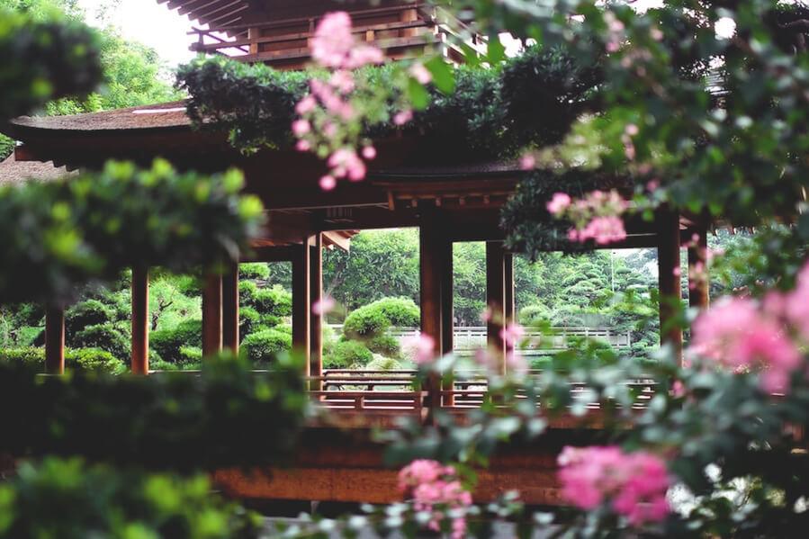 highlights-in-hongkong-nin-lian-garden