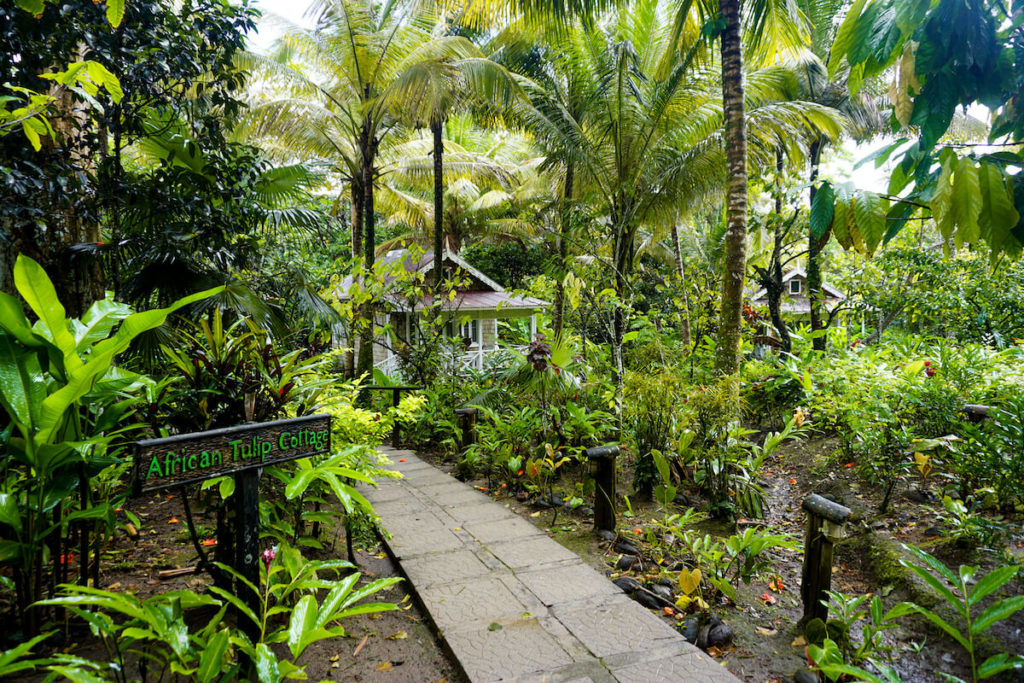 saint-lucia-karibik-highlights-fond-doux-plantation