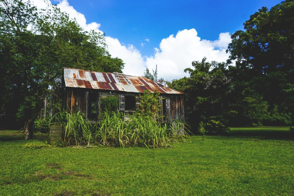 saint-lucia-karibik-unterkunft-balenbouche-estate-yogahaus