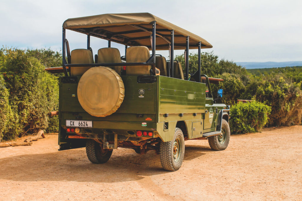 Addo-Elephant-Park-Suedafrika-Tour-Jeep-Game-Drive