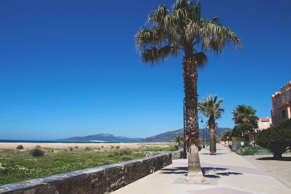 Tarifa-Spanien-Andalusien-Promenade-Strand-Palmen-Surfing