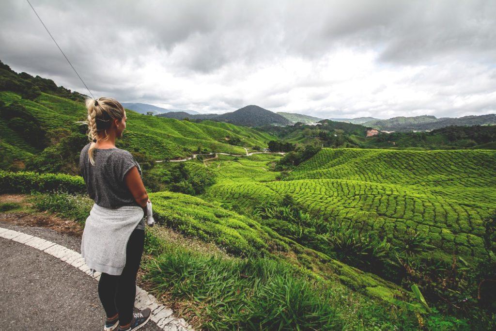 cameron-highlands-malaysia-teefelder-min