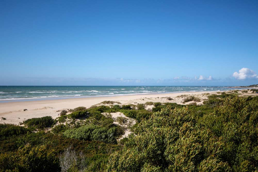 jeffreys-bay-suedafrika-rundreise-strand