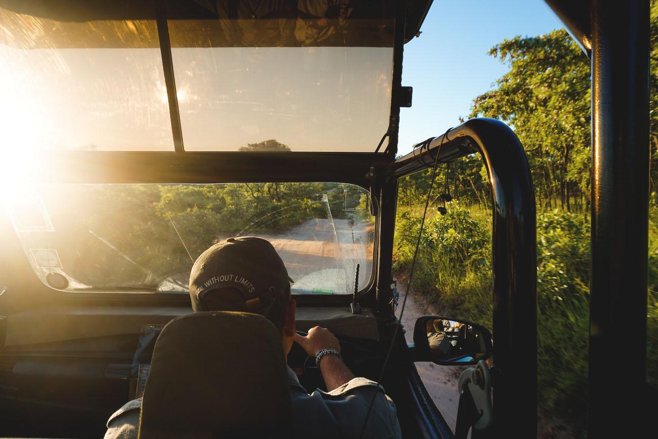 krueger-nationalpark-suedafrika-jeep-game-drive