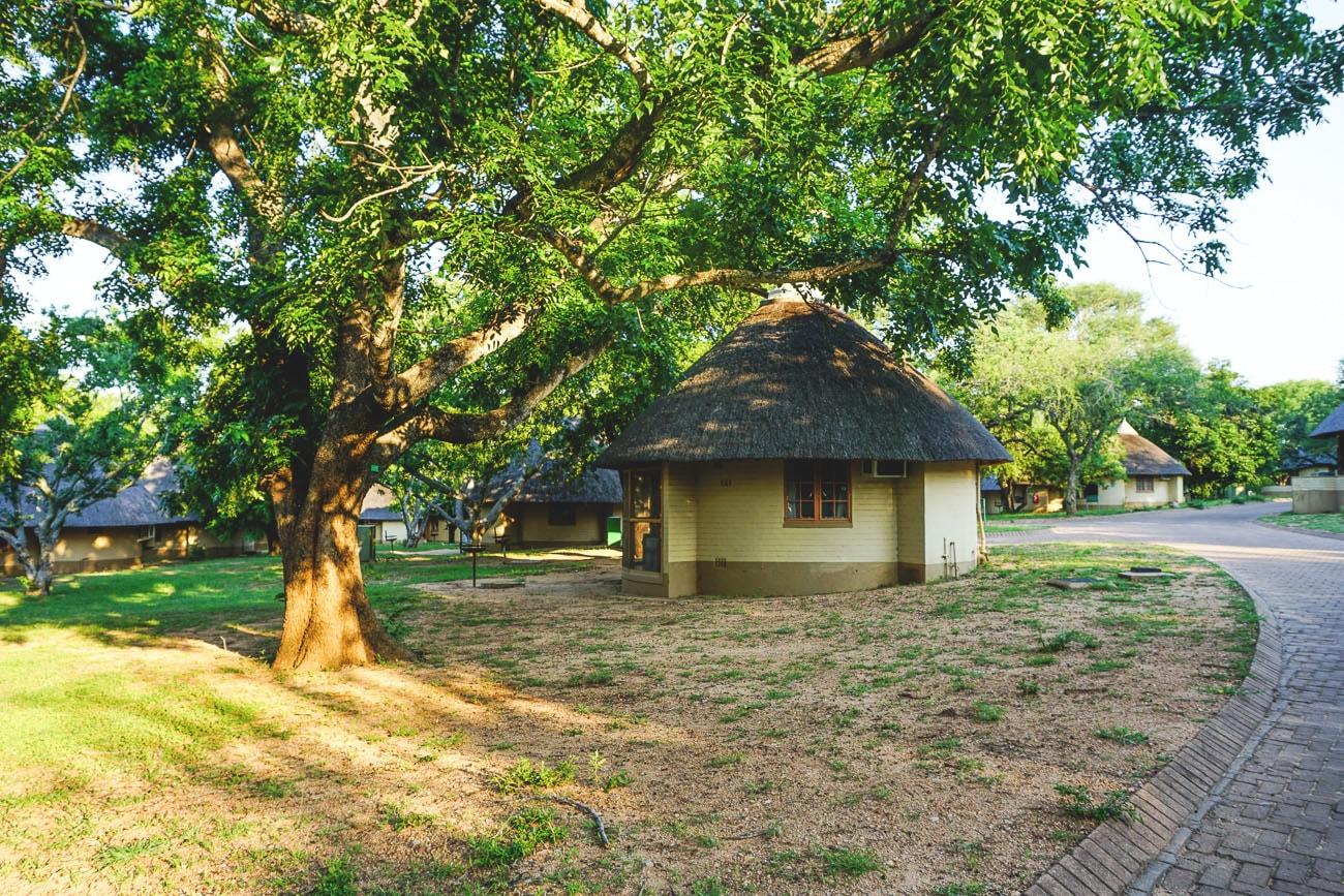krueger-nationalpark-suedafrika-skukuza-camp-min