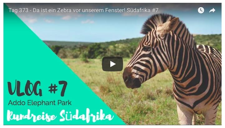 suedafrika-rundreise-addo-elephant-park-youtube-video