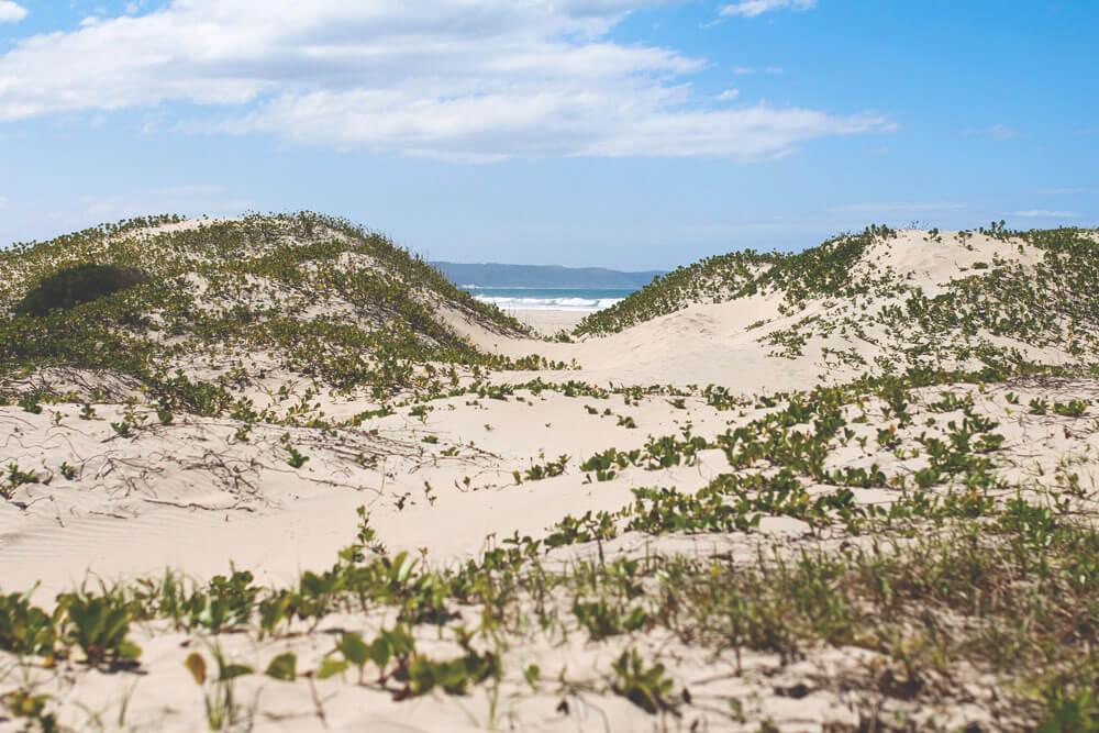 suedafrika-rundreise-chintsa-strand-duenen-reisetipps