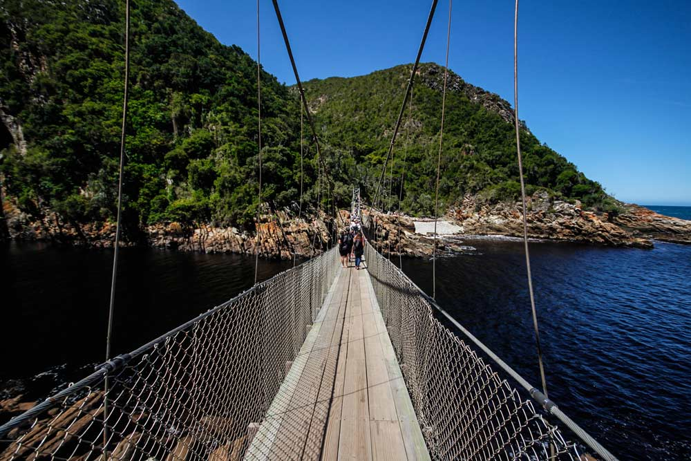 tsitsikamma-suspension-bridge-2