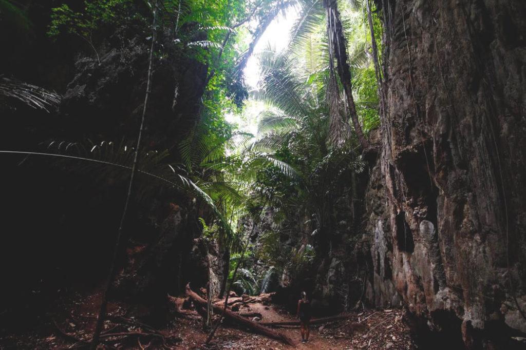 Natur-Railay-Beach-Lagune-Tour-Ausflug-Pflanzenwelt-Thailand