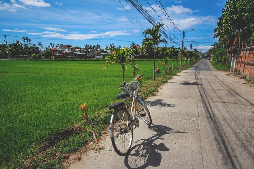 hoi-an-vietnam-tipps-fahrrad-reisfelder