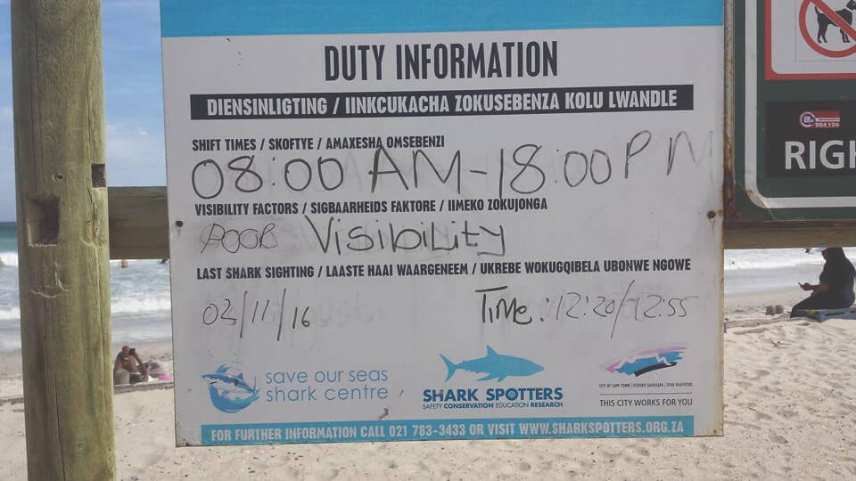 muizenberg-suedafrika-haie-strand-surfen