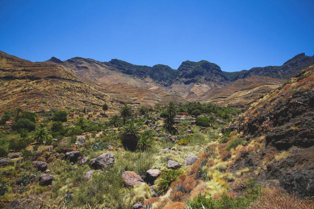 westkueste-gran-canaria-Barranco-De-Guayedra