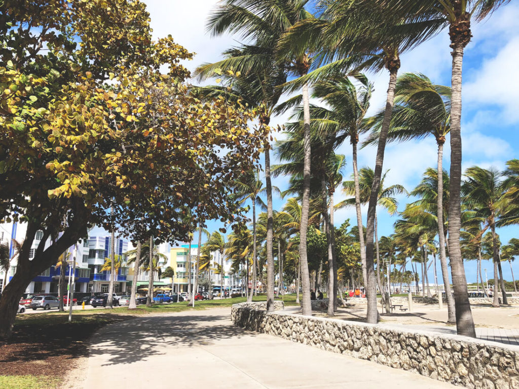 Florida-Rundreise-Promenade-Strand-Palmen