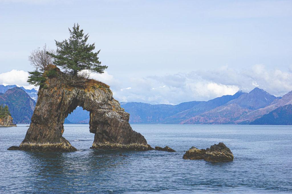 Kenai-Nationalpark-Alaska-Highlights