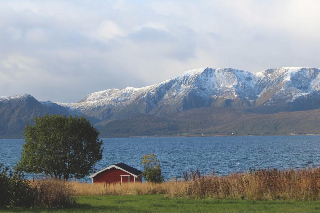lofoten-norwegen-berge-natur-fjord-haus