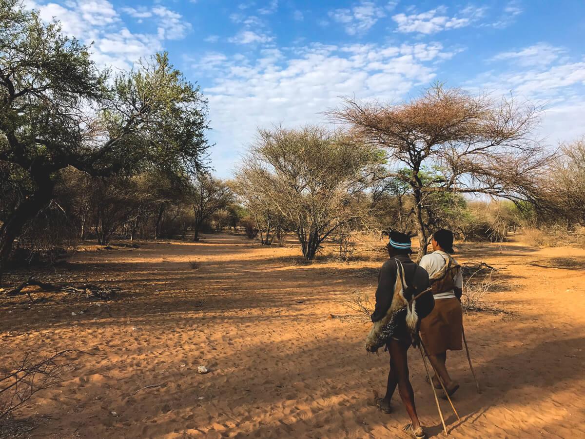 Botswana-Rundreise-Bushwalk-Bushmen