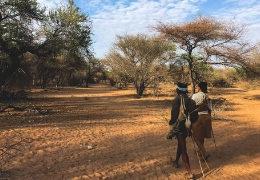 Laenderuebersicht-Botswana-Reiseberichte-Reiseblog-Afrika
