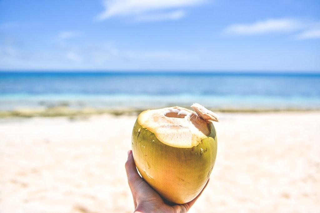 Tonga-Reise-Strand-Kokosnuss