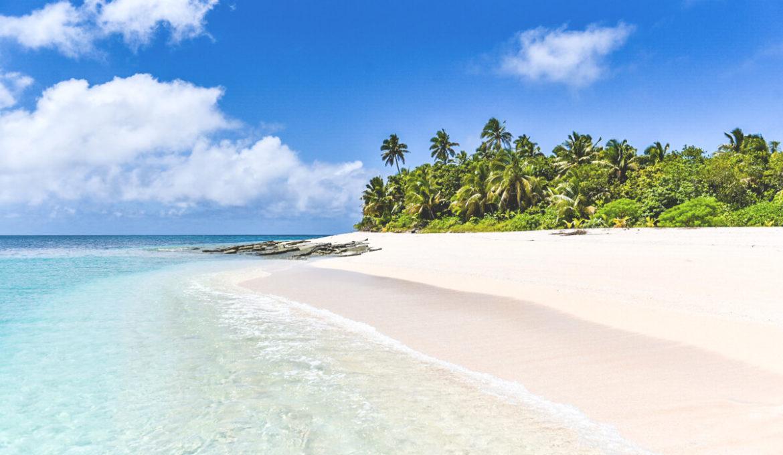 Tonga im Südpazifik – Mit Buckelwalen auf Tuchfühlung