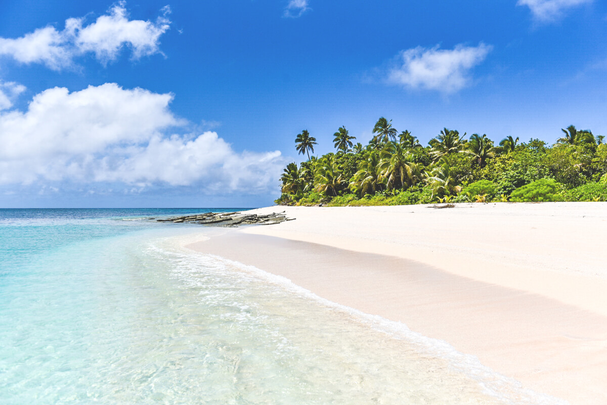 tonga-insel-traumstrand-palmen-meer