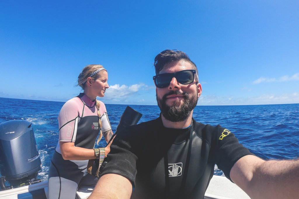 tonga-polynesien-suedpazifik-walschwimmen