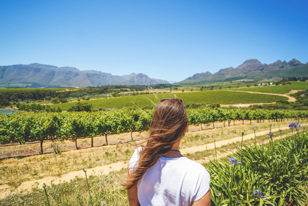 Hidden-Valley-Wines-Winelands-Suedafrika