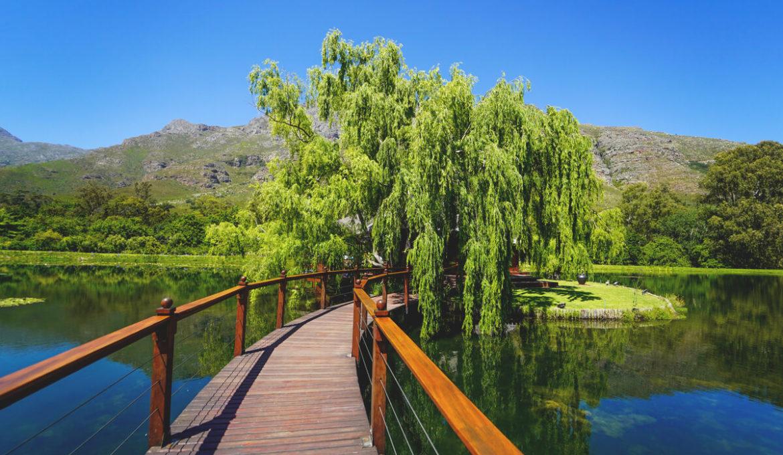 Die Winelands in Südafrika – 5 wunderschöne Weingüter & Tipps