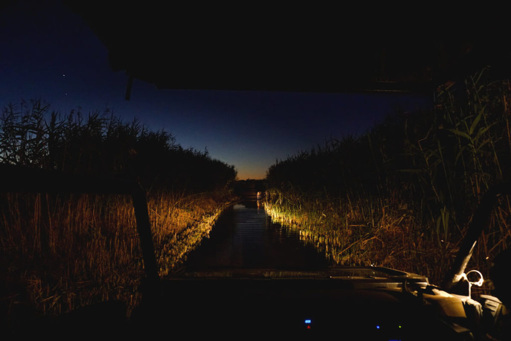 Night Drive im Augrabies Falls National Park mit Jeep