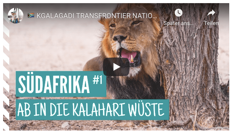 Südafrika Rundreise Kgalagadi Transfrontier National Park Video Youtube