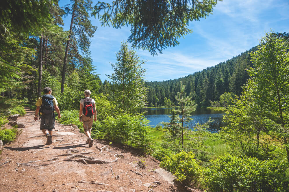 Deutschland-Urlaub-Schwarzwald-Wandern