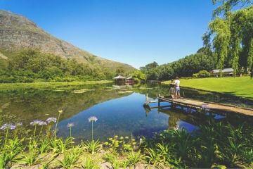 suedafrika-reiseblog-reisetipps-winelands