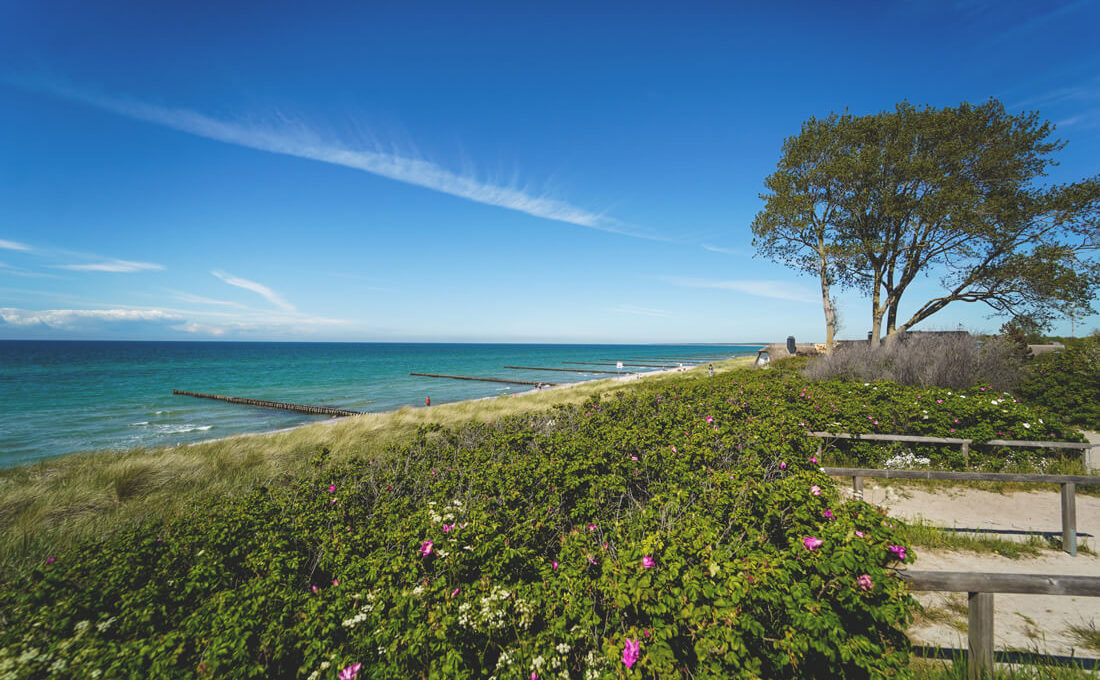 Ahrenshoop an der Ostsee – Urlaub im Künstlerdorf am Meer