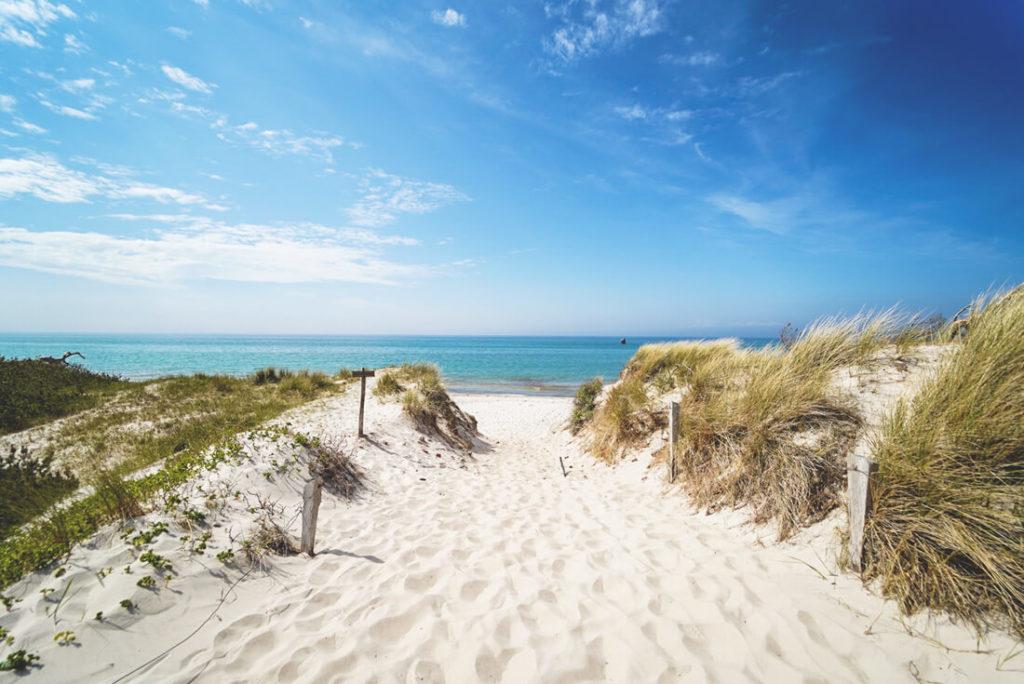 Sommerurlaub in Mecklenburg Vorpommern - Fischland Darss Weststrand