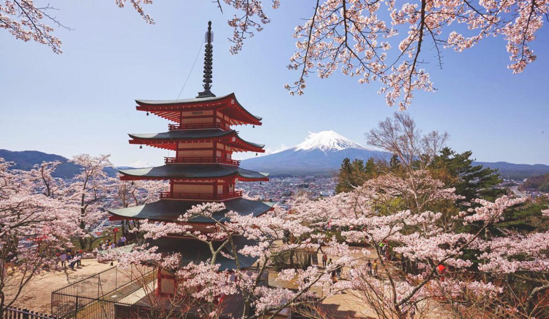 Eine Reise nach Japan? 10 Gründe, warum wir nach Japan reisen wollen