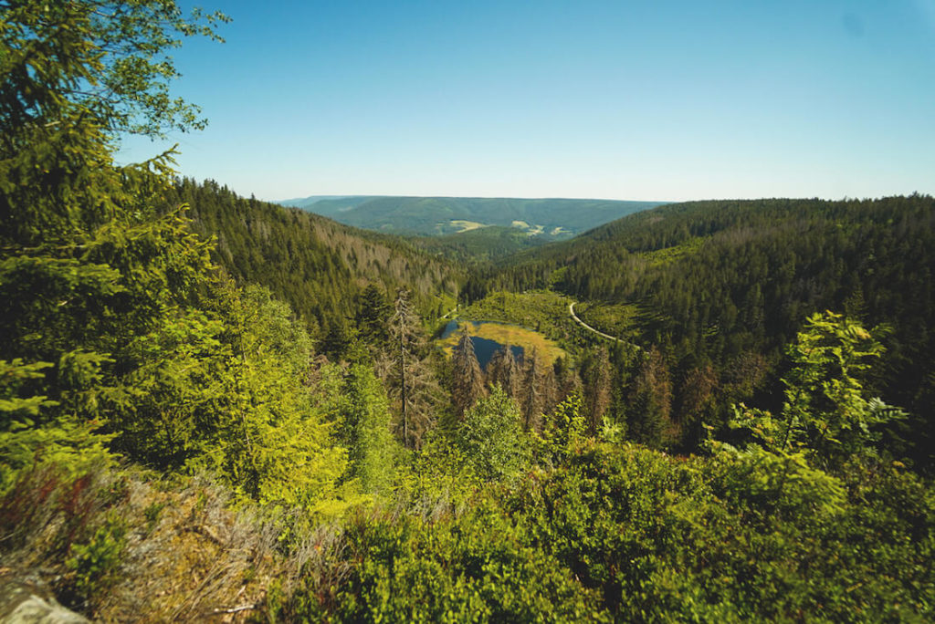 Baiersbronn-Schwarzwald-Mountainbike-Tour-Huzenbach-Seeblick
